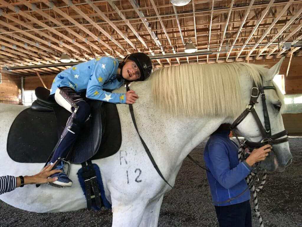 Sponsor a Therapy Horse
