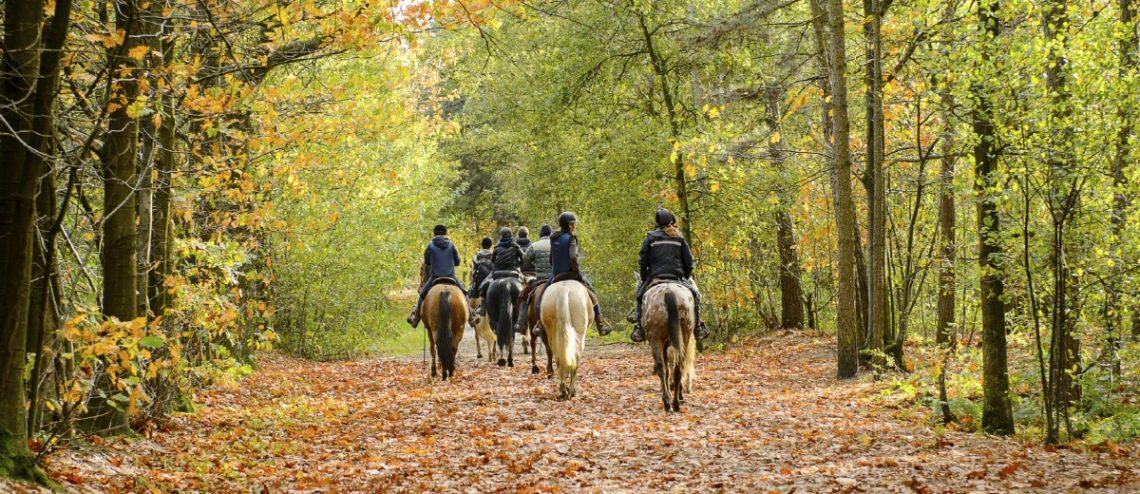Ride for Lovelane