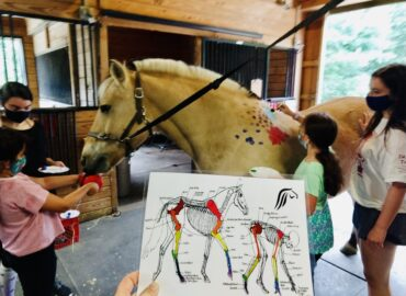 New Unmounted Programs for Ages 3-5 or 17+